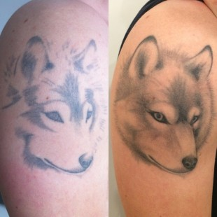 Tattoo wolf touch up